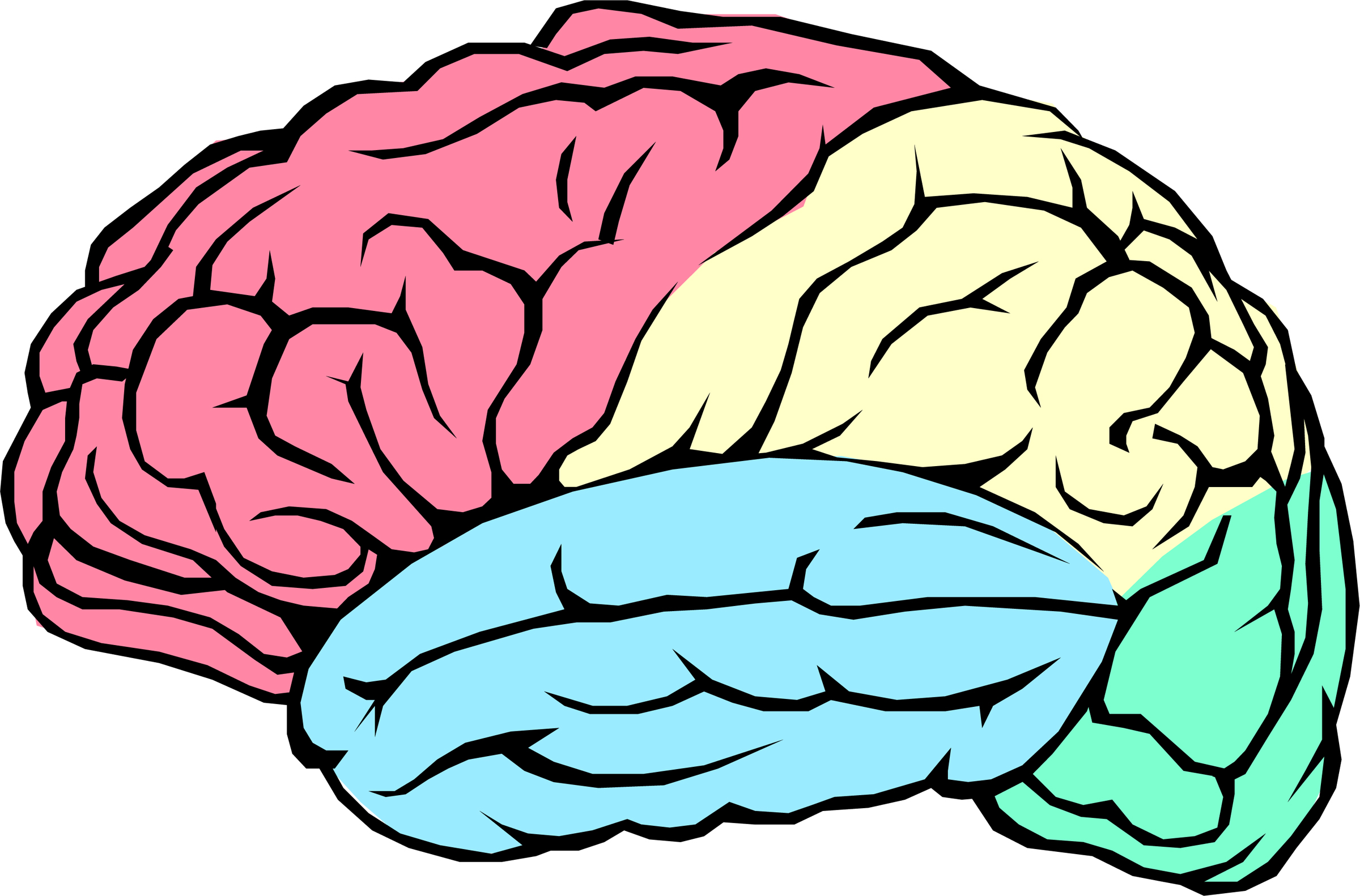 Images of Brain Images For Kids - #SpaceHero